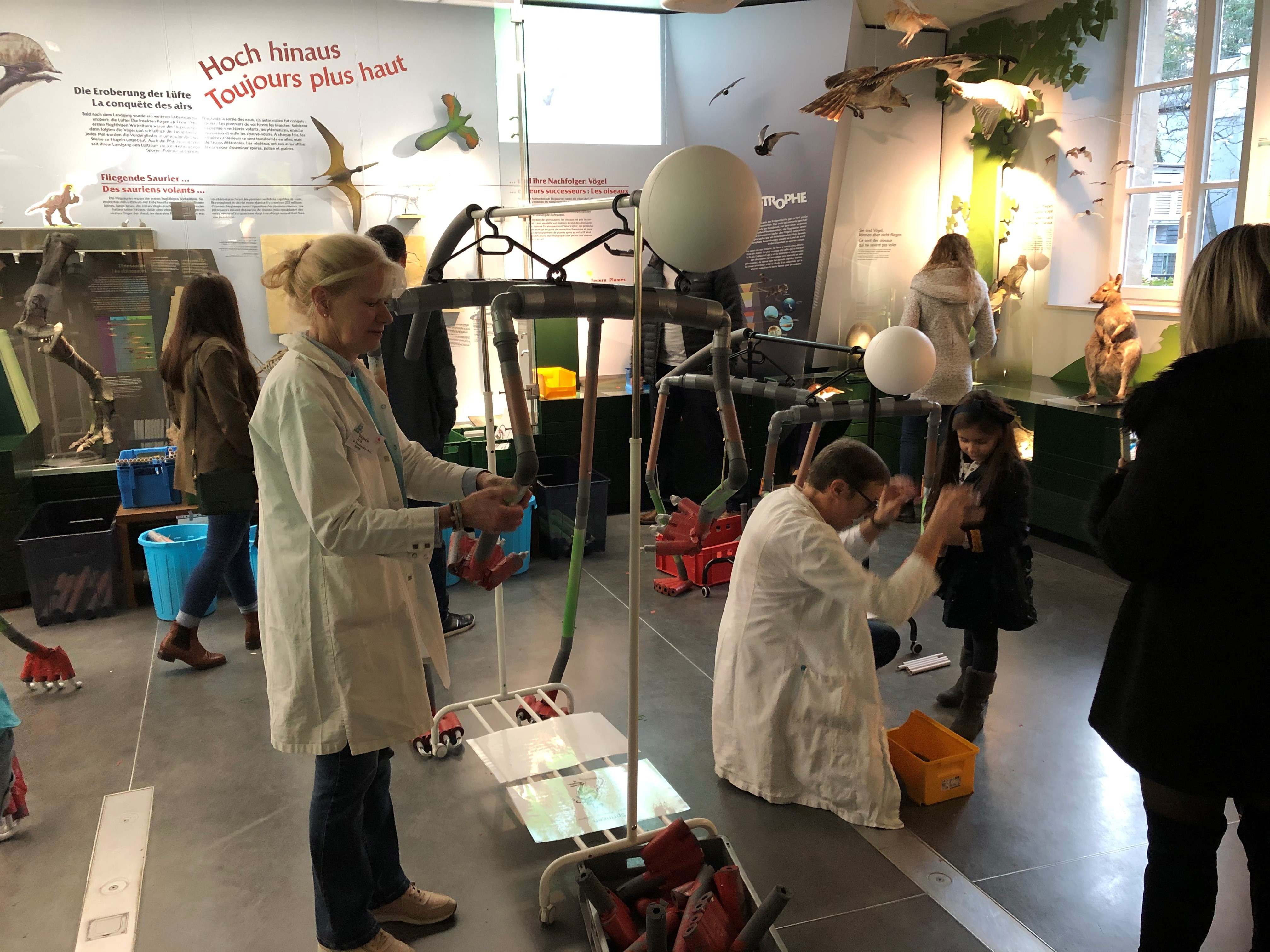 Workshop naturmusee Science Festival 2019