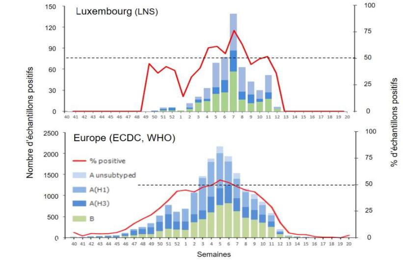 Influenzafälle 2021