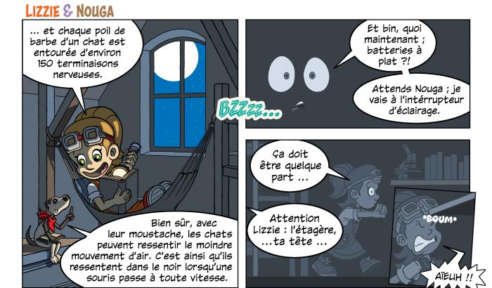 BD Lizzie Nouga animaux noctures
